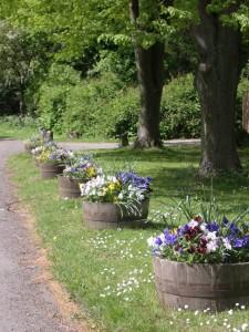 Floral Tubs