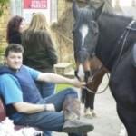 Horses like tea too!